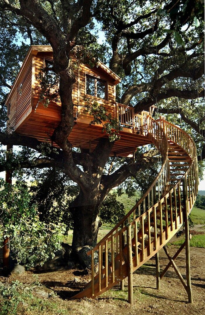Rustic Diy Tree Houses Design Ideas For Your Kids And Family16