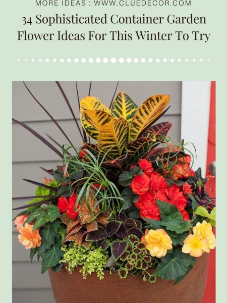 34 Sophisticated Container Garden Flower Ideas For This Winter To Try