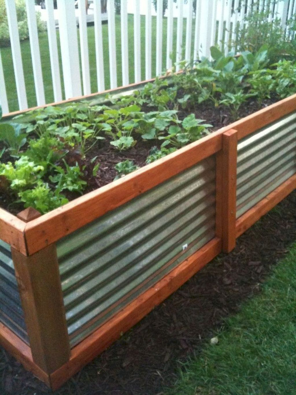 Best Raised Garden Bed For Backyard Landscaping Ideas To Try Asap25