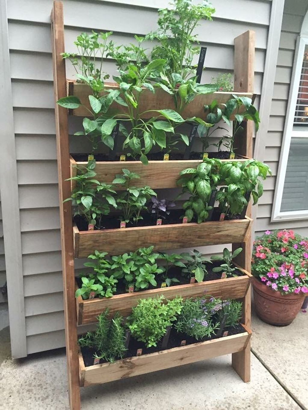 Brilliant Gardening Design Ideas You Need To Know In 202008