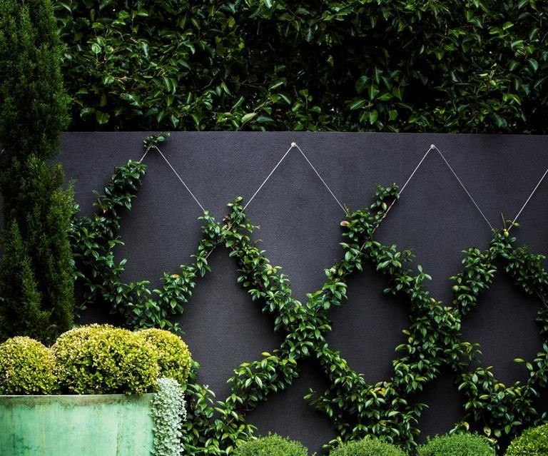 Brilliant Gardening Design Ideas You Need To Know In 202013