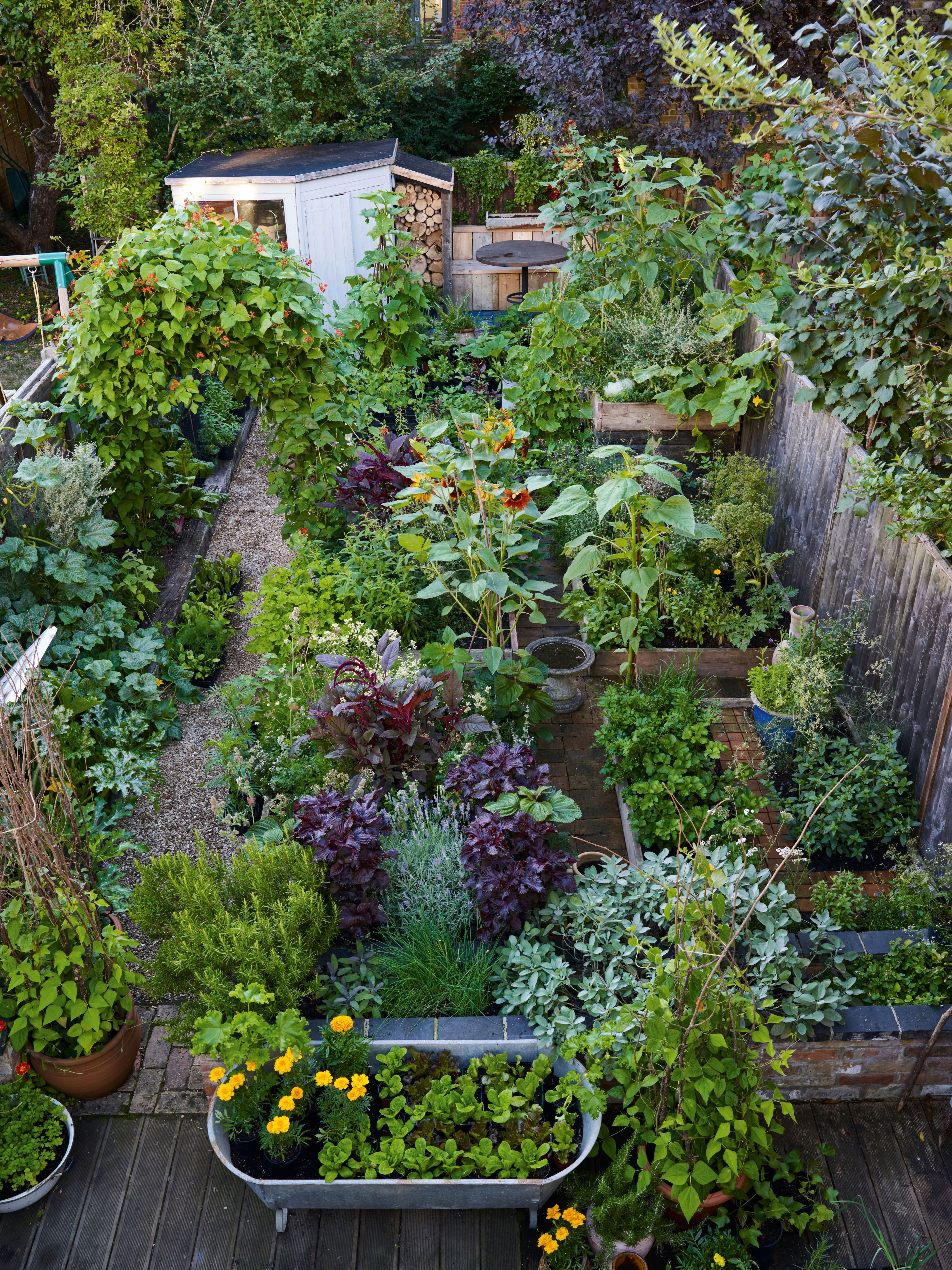Brilliant Gardening Design Ideas You Need To Know In 202021