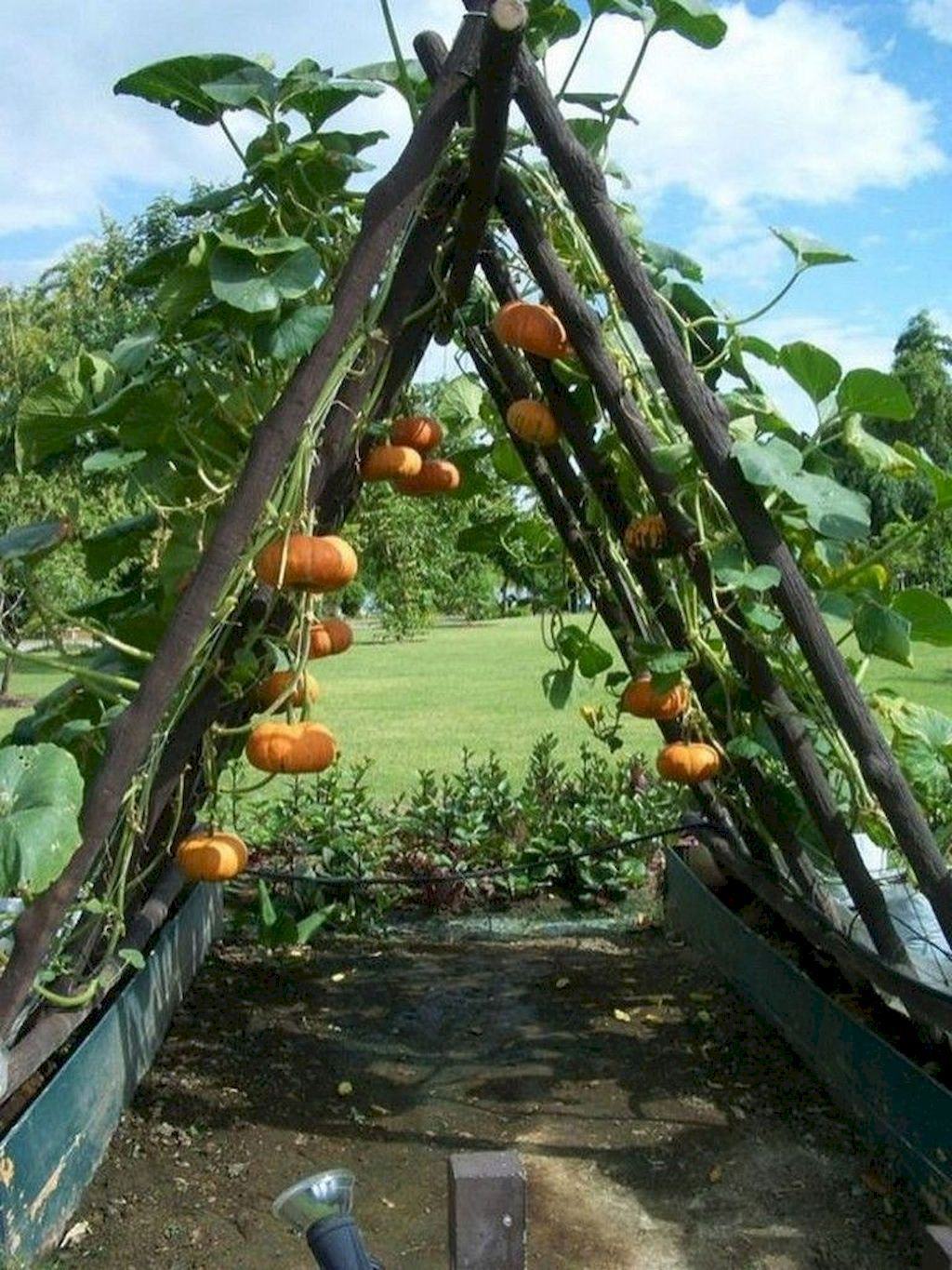 Brilliant Gardening Design Ideas You Need To Know In 202029