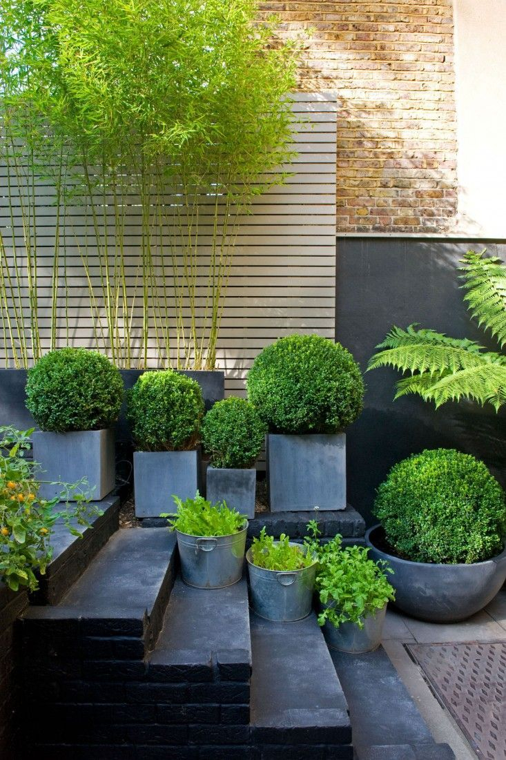 Brilliant Gardening Design Ideas You Need To Know In 202036