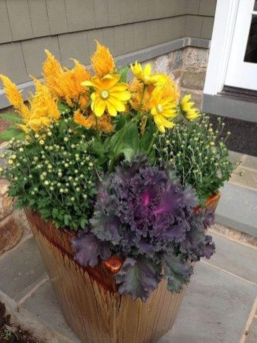 Sophisticated Container Garden Flower Ideas For This Winter To Try08