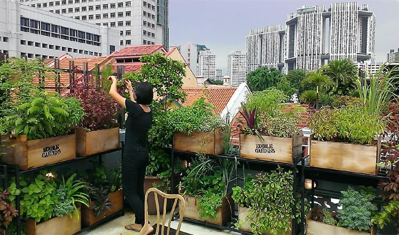 Adorable Rooftop Gardens Design Ideas That Looks Awesome25
