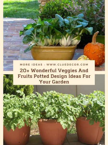 20+ Wonderful Veggies And Fruits Potted Design Ideas For Your Garden
