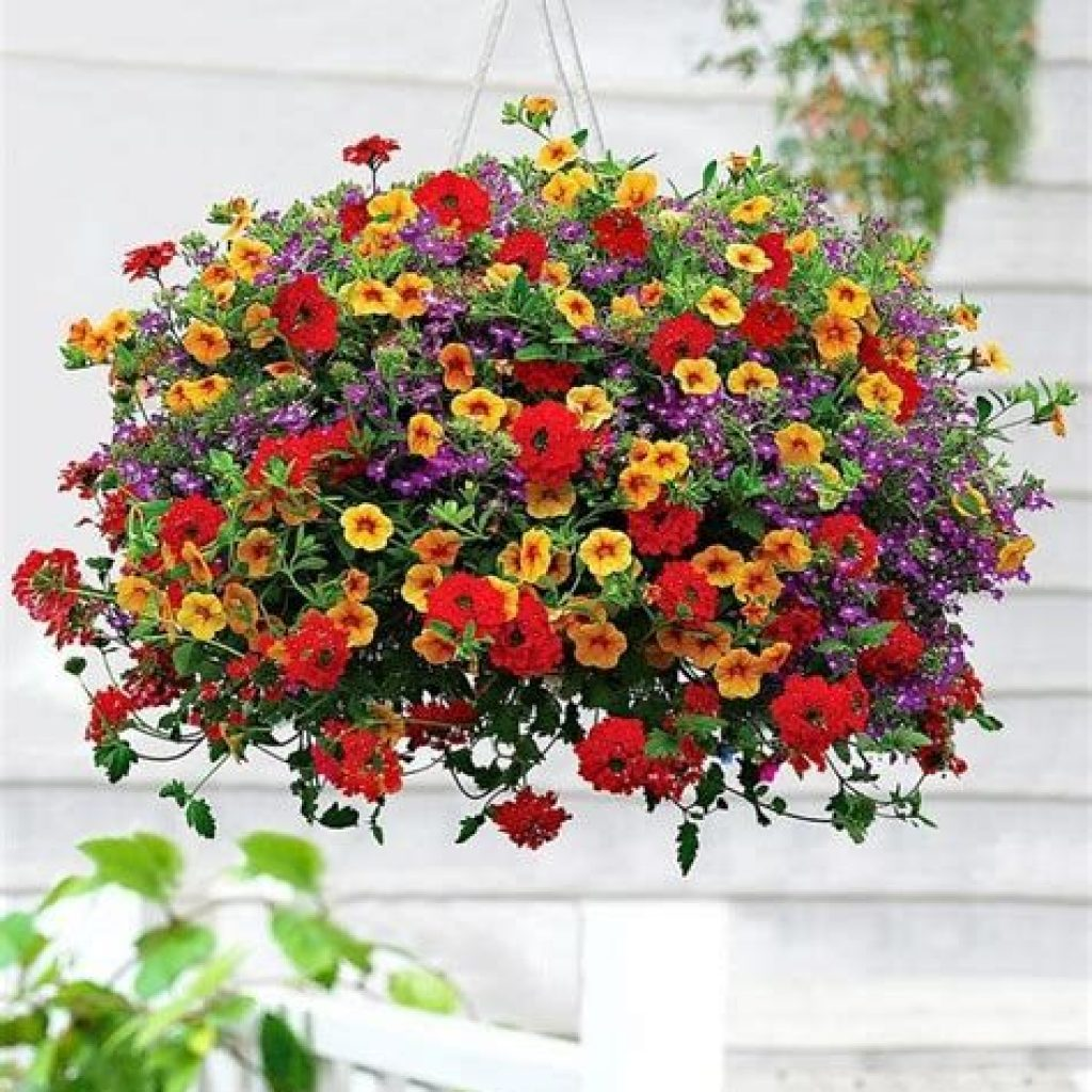 Creative Blooming Hanging Baskets For Garden Year Round 01