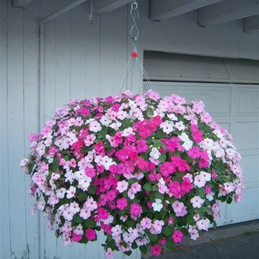 Creative Blooming Hanging Baskets For Garden Year Round 04