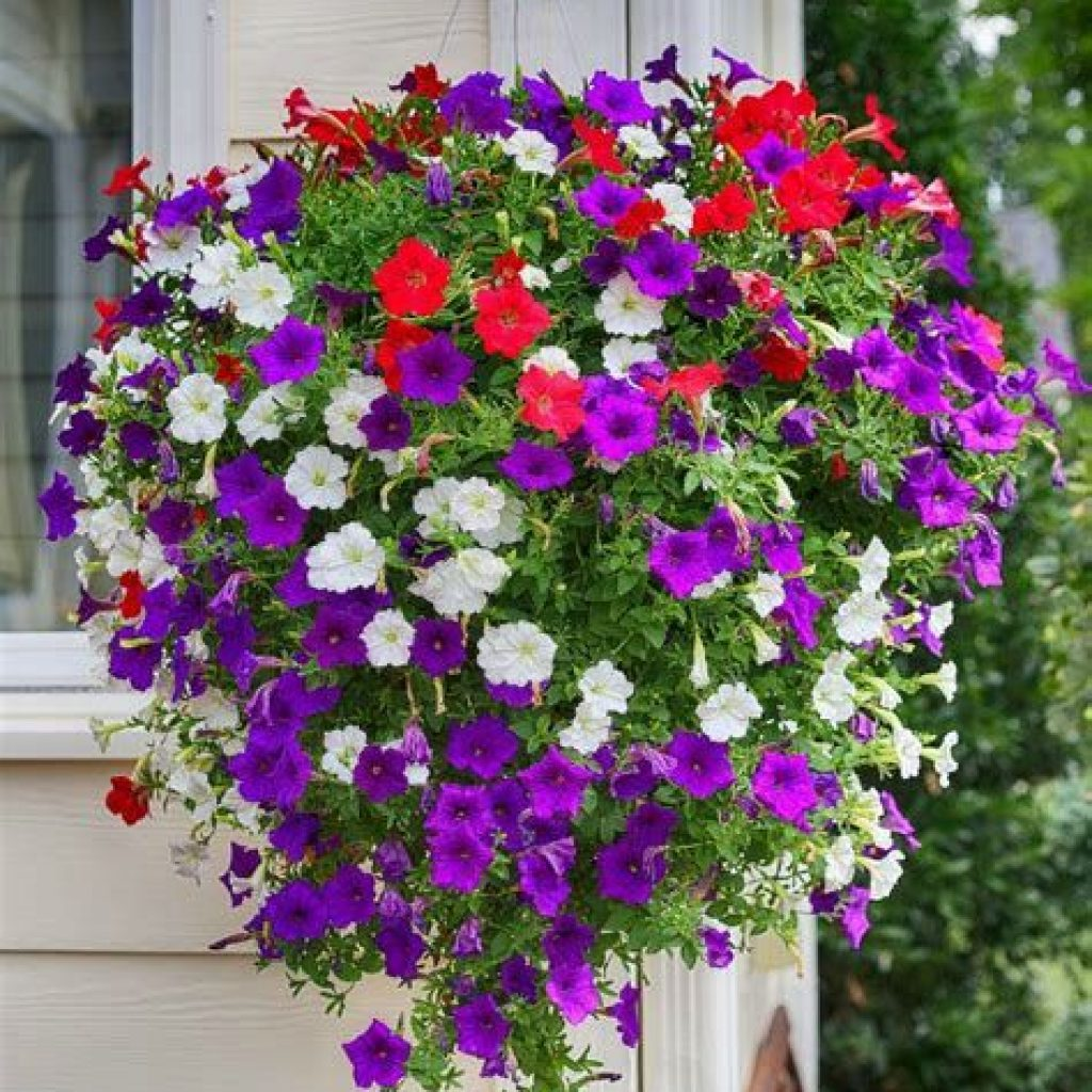 Creative Blooming Hanging Baskets For Garden Year Round 07
