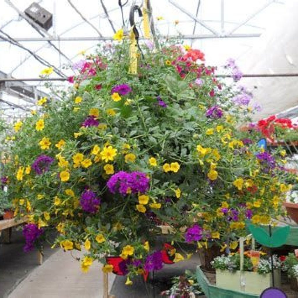 Creative Blooming Hanging Baskets For Garden Year Round 09