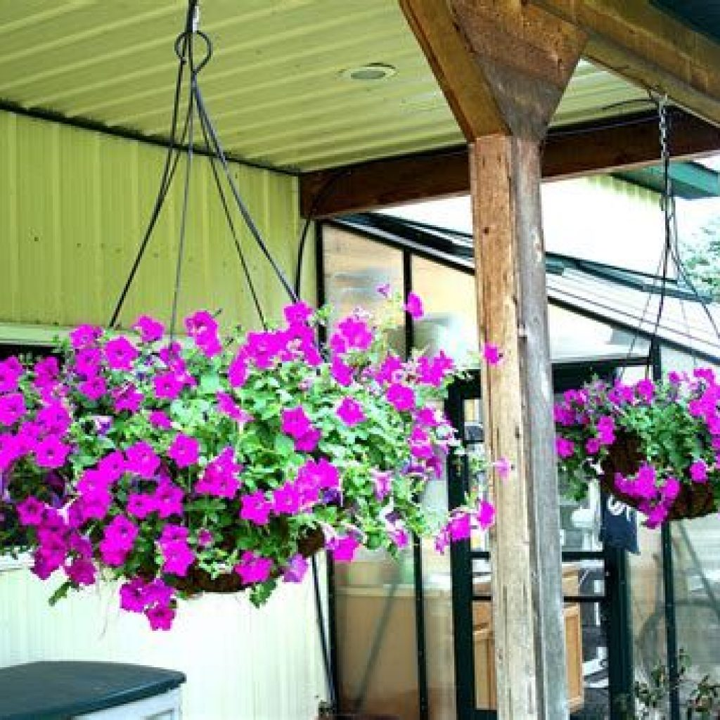 Creative Blooming Hanging Baskets For Garden Year Round 20