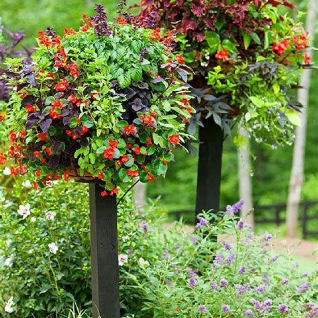 Creative Blooming Hanging Baskets For Garden Year Round 28