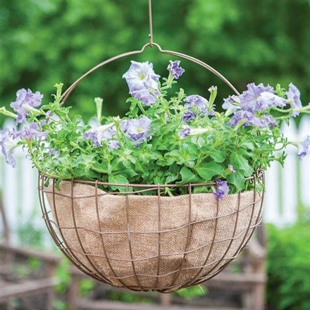 Creative Blooming Hanging Baskets For Garden Year Round 29
