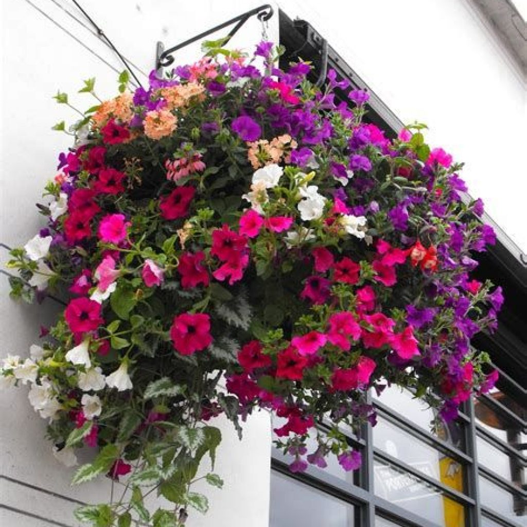 Creative Blooming Hanging Baskets For Garden Year Round 35