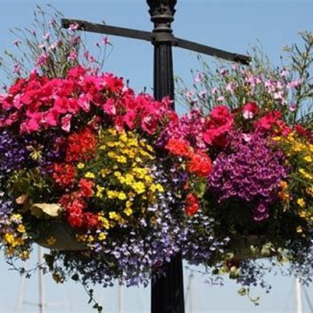 Creative Blooming Hanging Baskets For Garden Year Round 40
