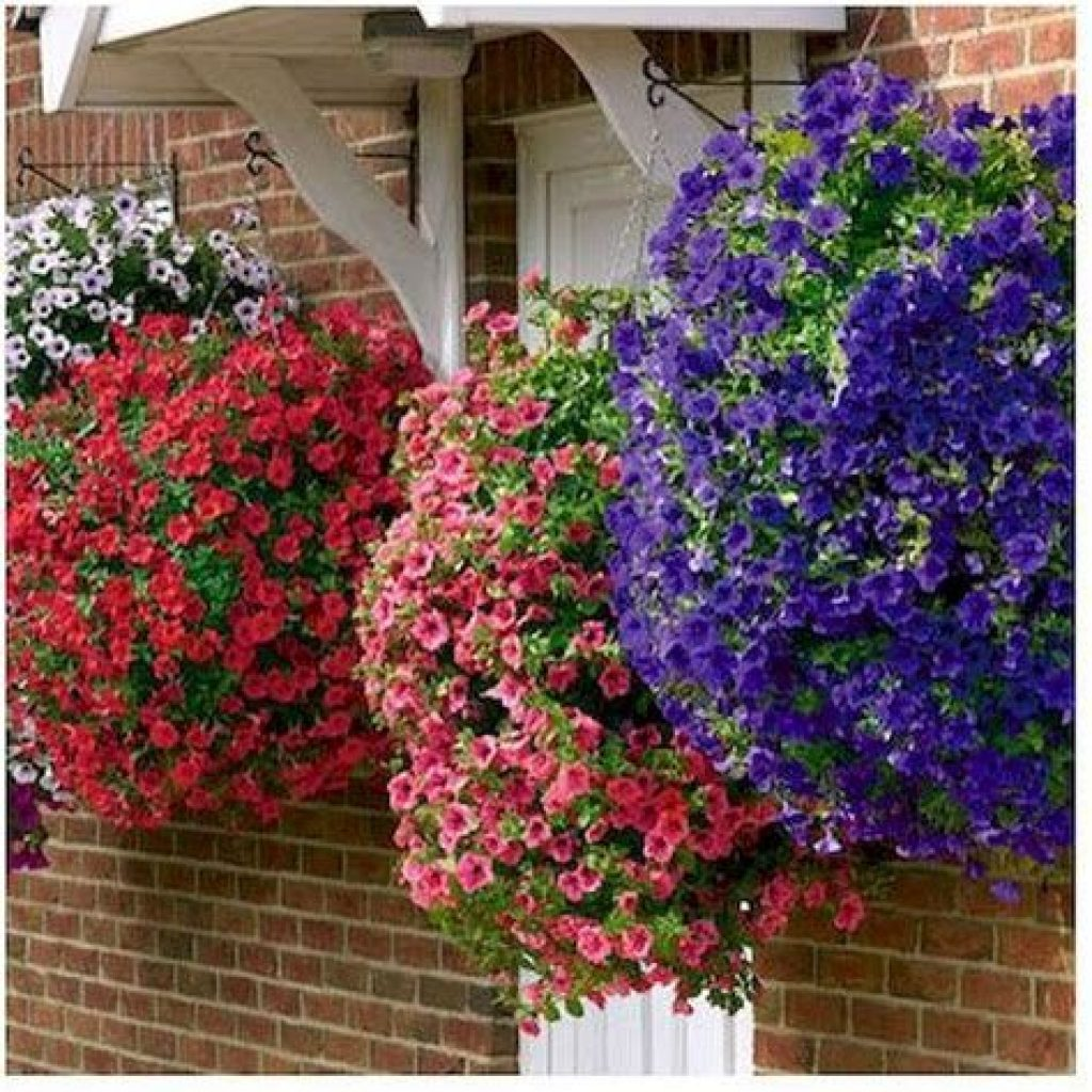 Creative Blooming Hanging Baskets For Garden Year Round 41