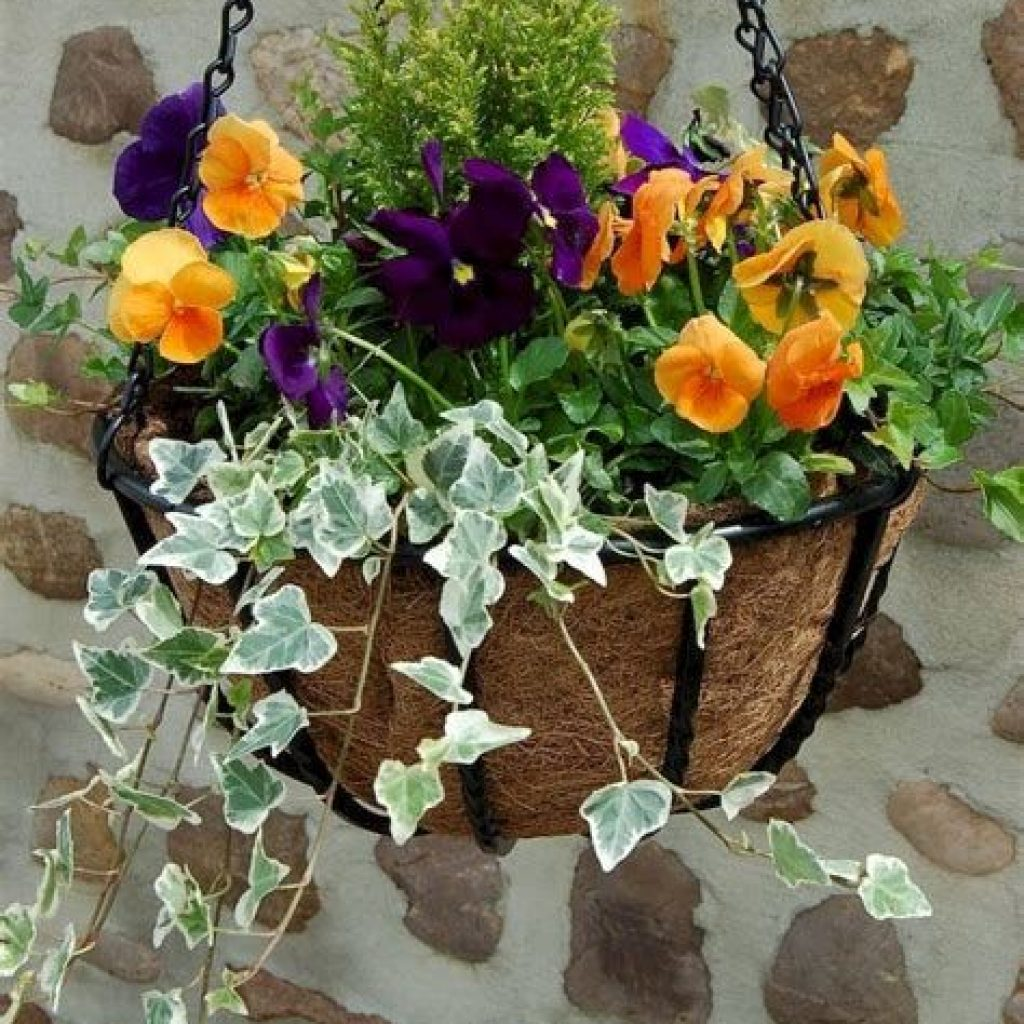 Creative Blooming Hanging Baskets For Garden Year Round 42