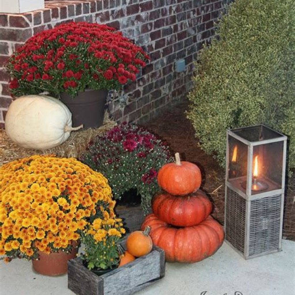 Easy And Creative Fall Decoration For Your Backyard 01
