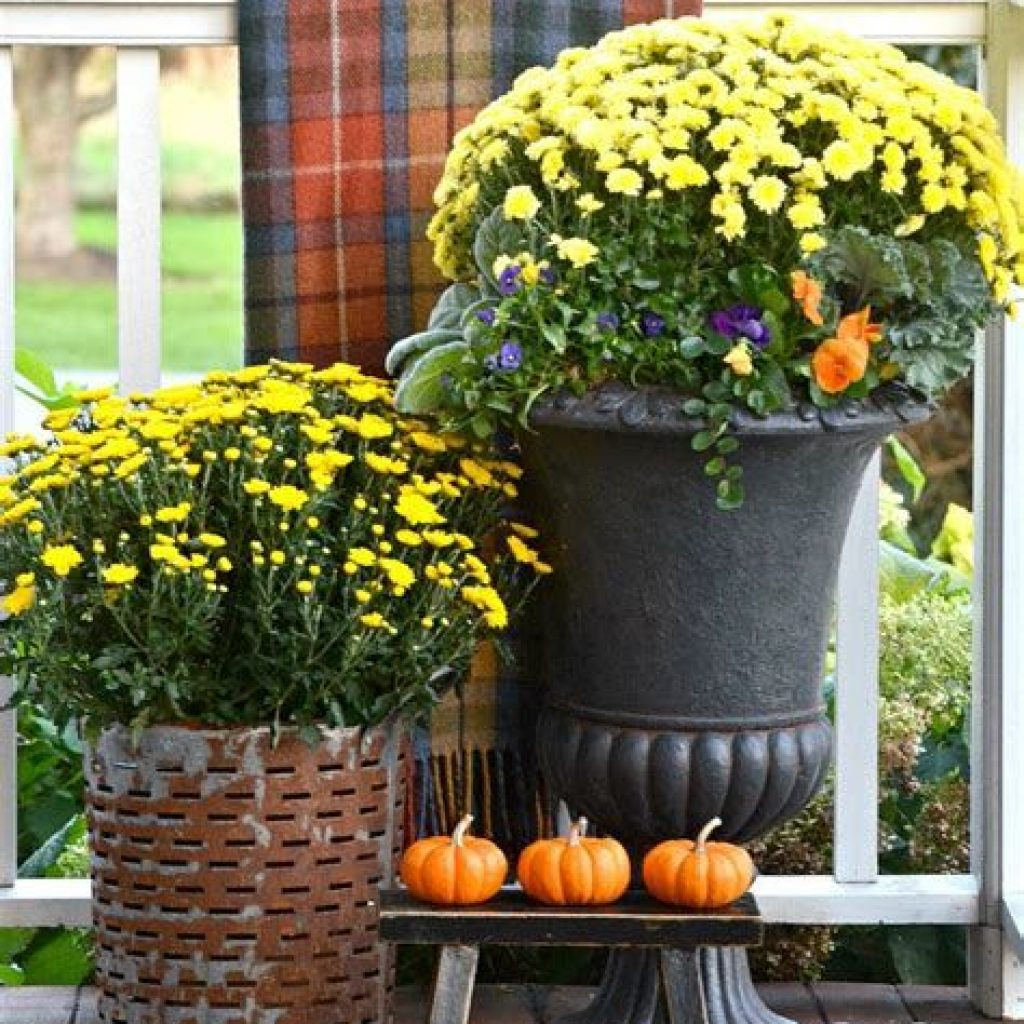 Easy And Creative Fall Decoration For Your Backyard 06
