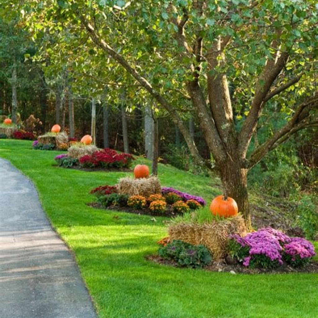 Easy And Creative Fall Decoration For Your Backyard 39