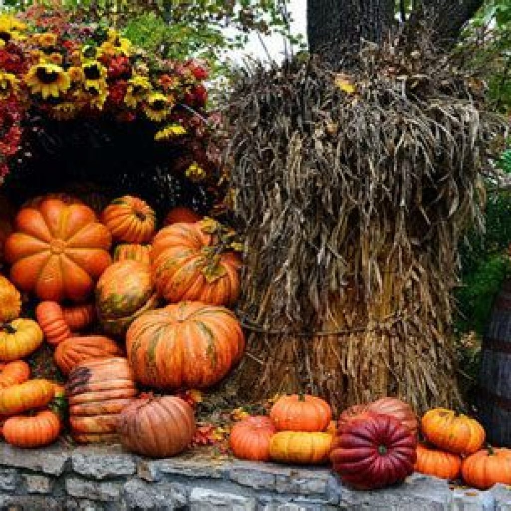 Easy Outdoor Fall Decoration To Inspire Yourself 17