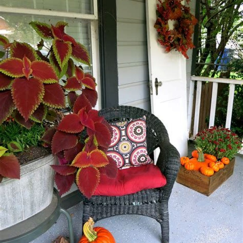 Easy Outdoor Fall Decoration To Inspire Yourself 34