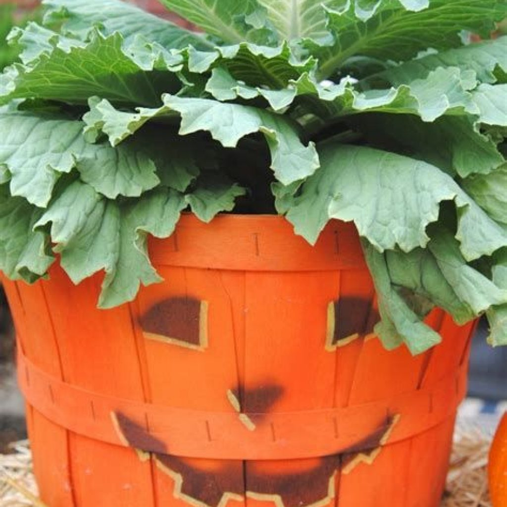 Easy Outdoor Fall Decoration To Inspire Yourself 43