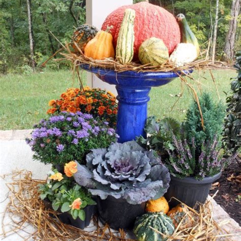 Fantastic Backyard Decoration For Fall This Year 04
