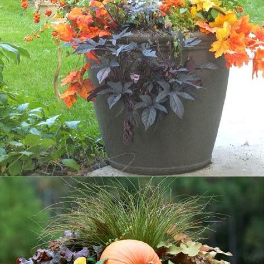 Fantastic Backyard Decoration For Fall This Year 12