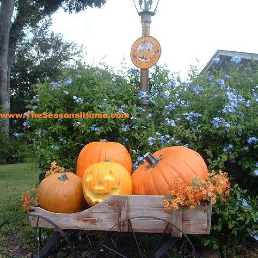 Fantastic Backyard Decoration For Fall This Year 15