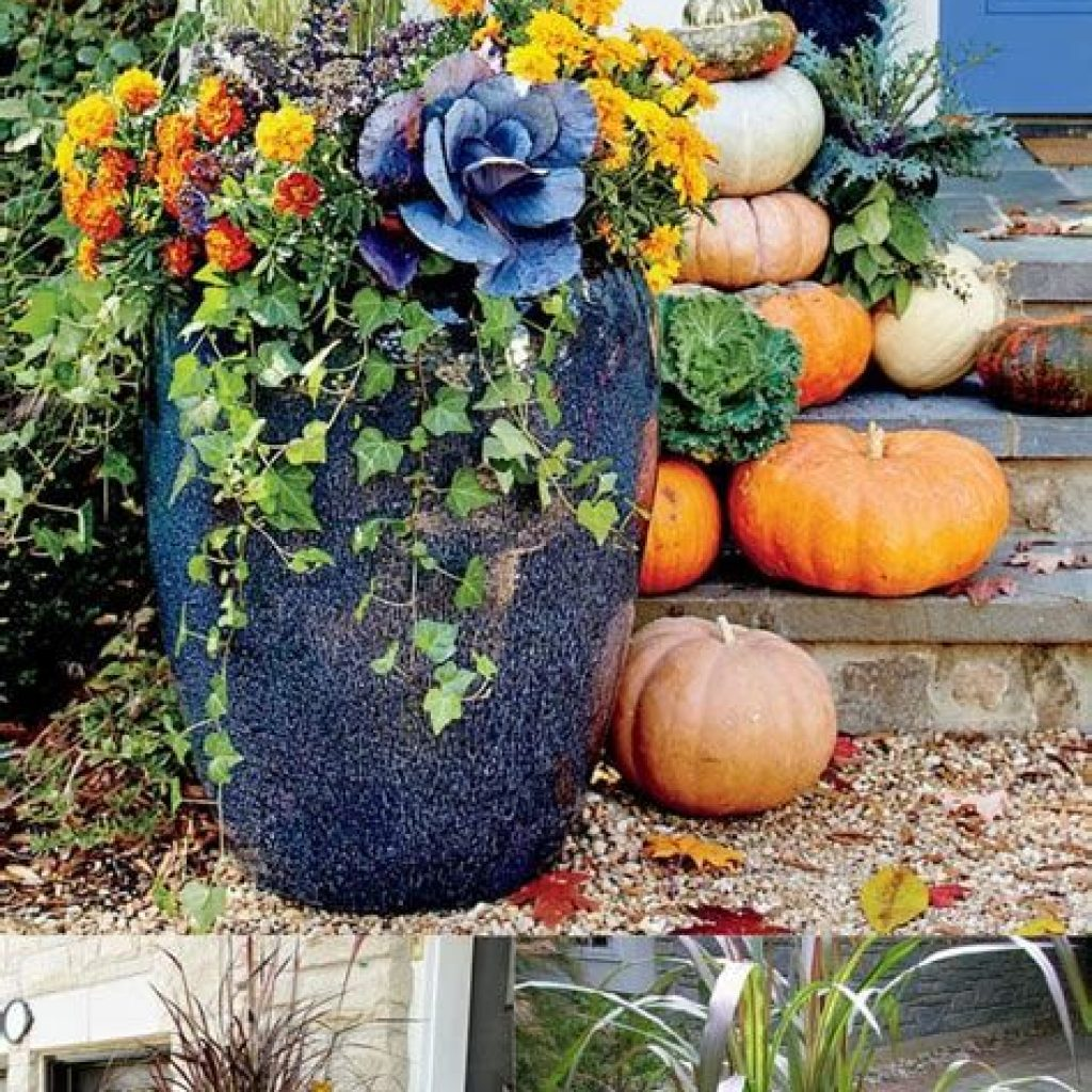 Fantastic Backyard Decoration For Fall This Year 16