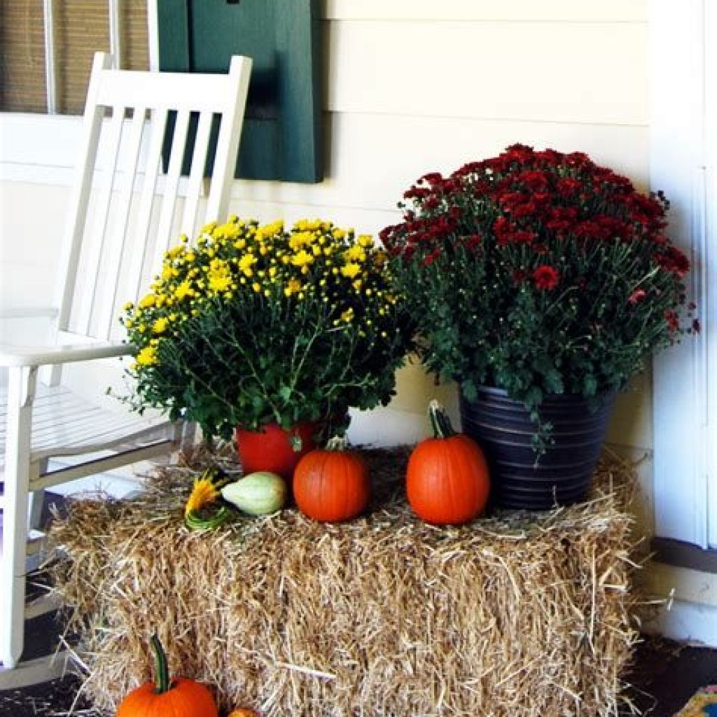 Incredible Fall Decoration For Your Front Yard On Budget 12
