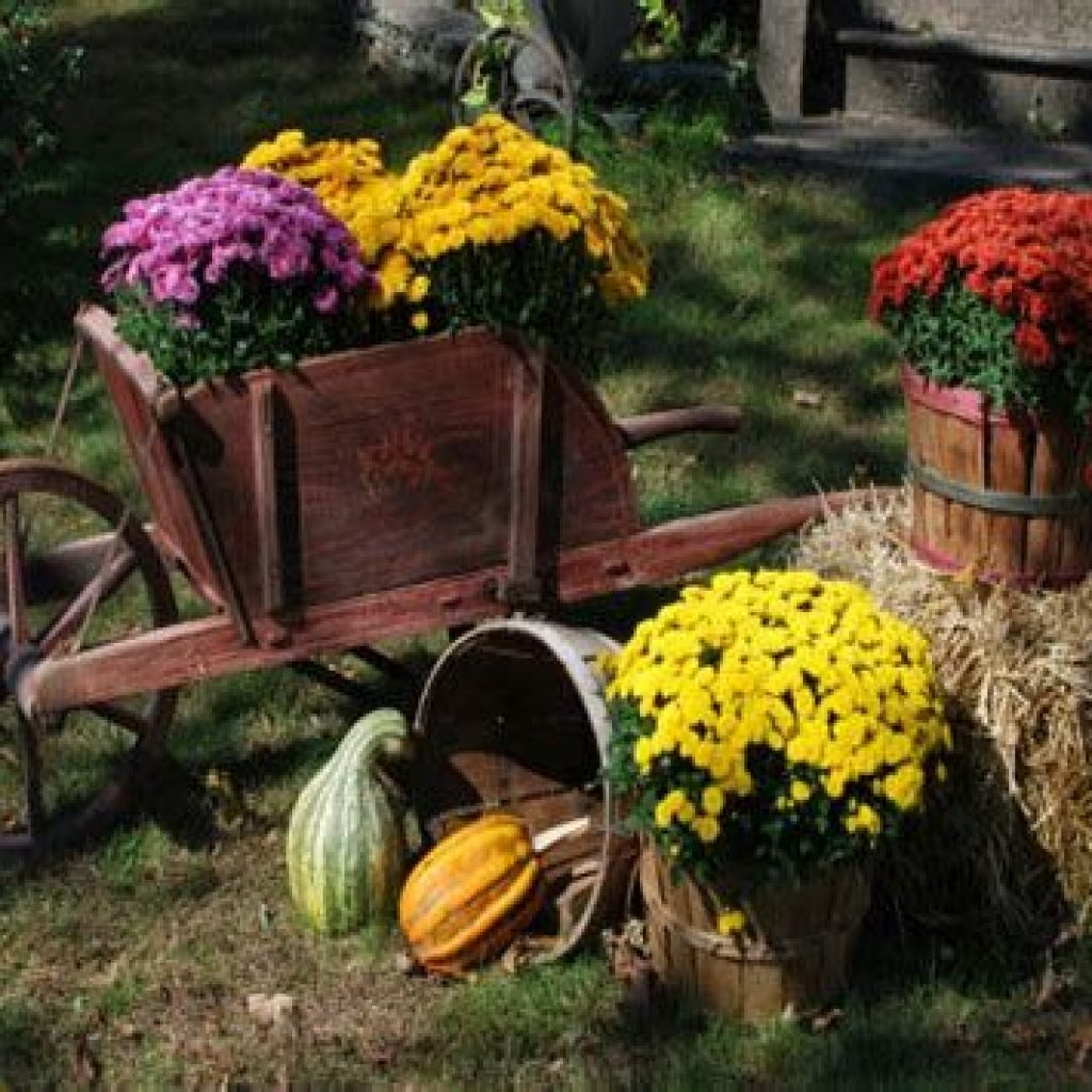 Incredible Fall Decoration For Your Front Yard On Budget 16