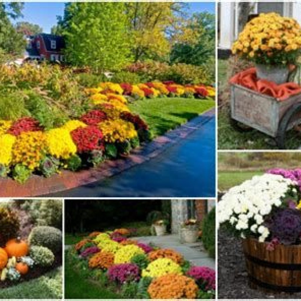Incredible Fall Decoration For Your Front Yard On Budget 17