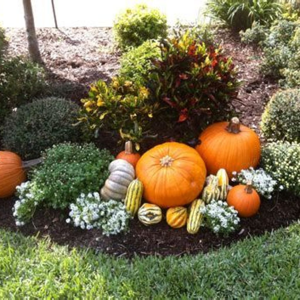 Incredible Fall Decoration For Your Front Yard On Budget 24