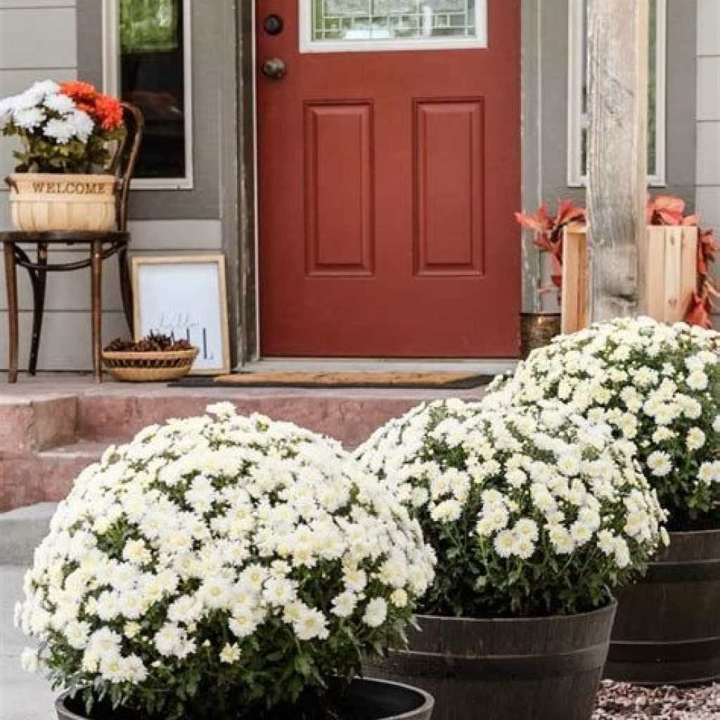 Incredible Fall Decoration For Your Front Yard On Budget 27