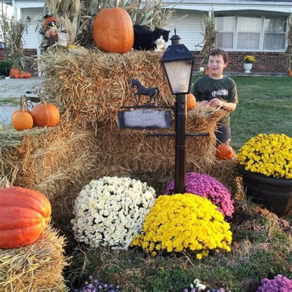 Incredible Fall Decoration For Your Front Yard On Budget 29