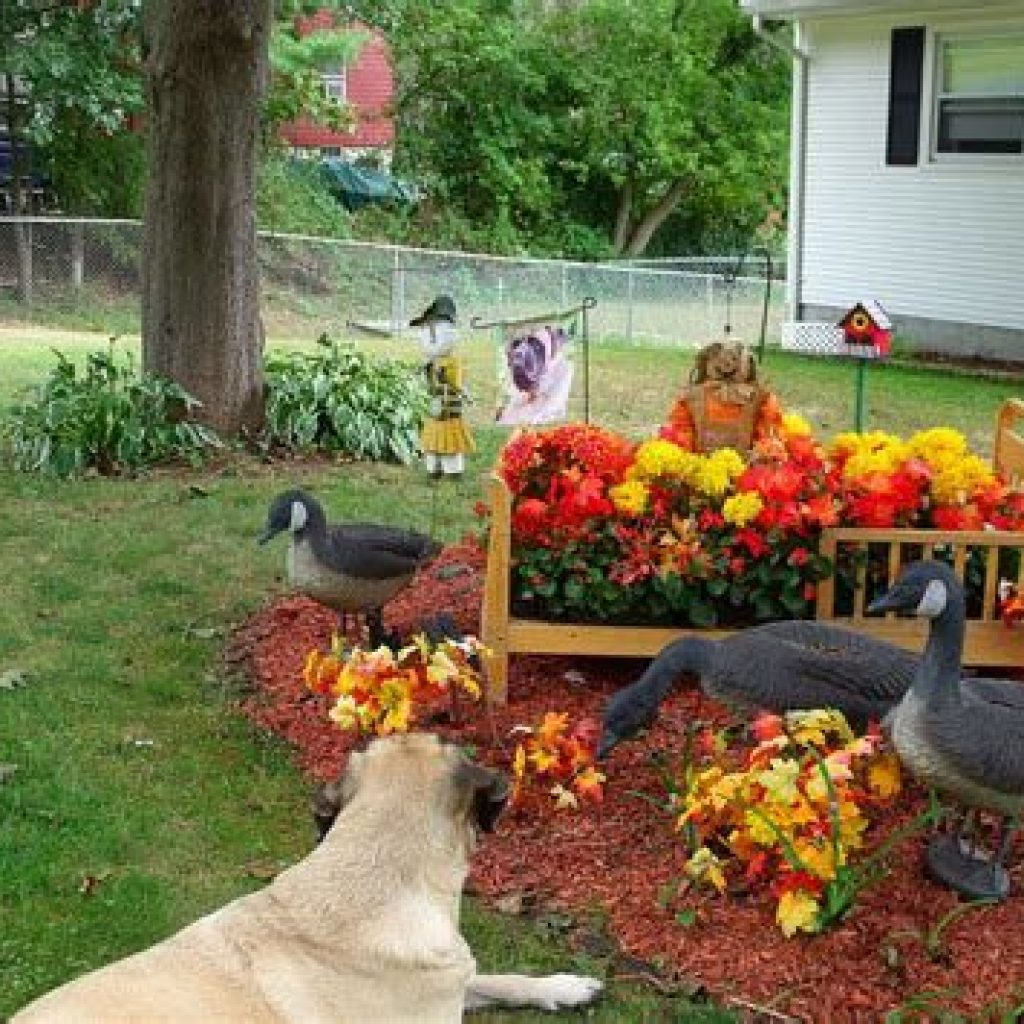 Incredible Fall Decoration For Your Front Yard On Budget 32