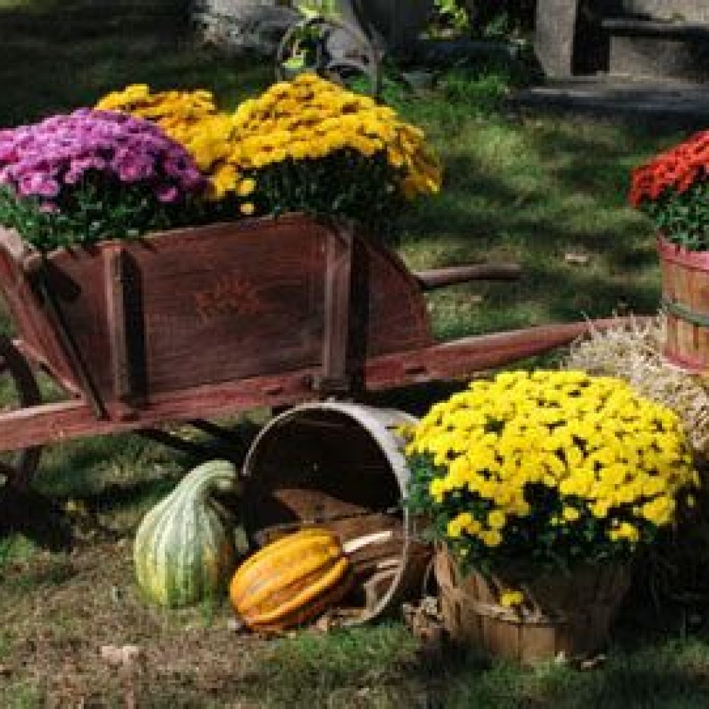 Simple But Beautiful Fall Decoration In The Front Yard 36