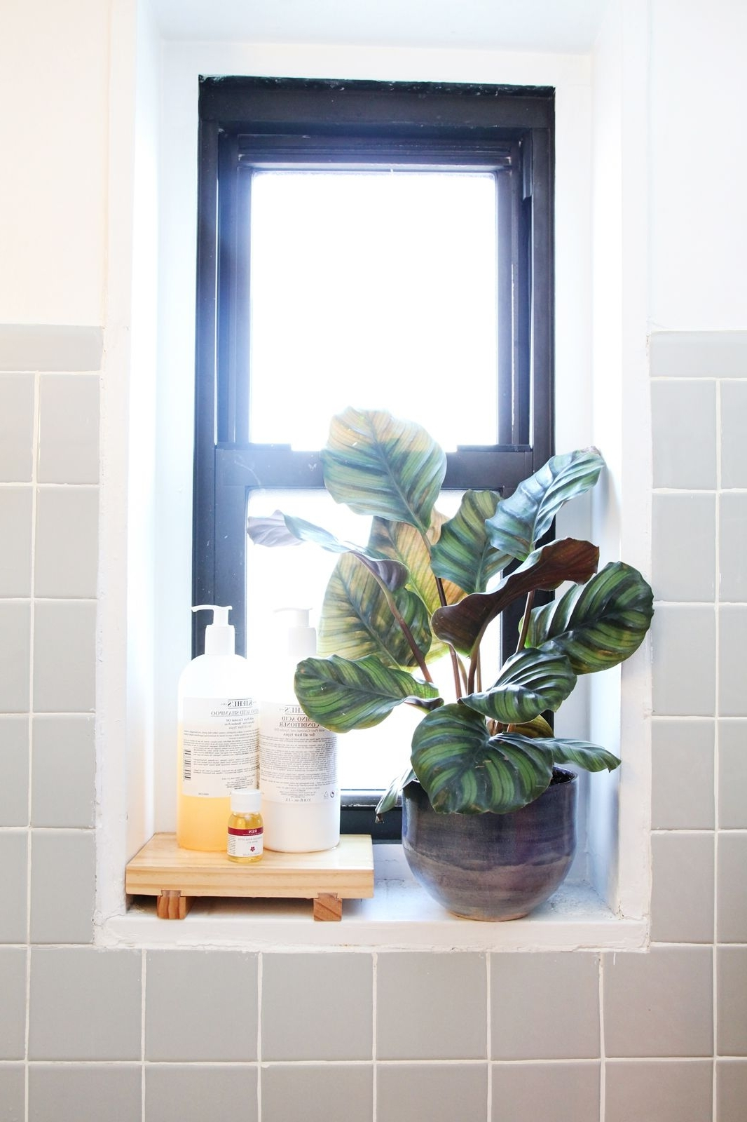 50 Small Space Living Ideas You Can Use Now | Window In 20+ Ideas For Bathroom Window Sills Inspirations