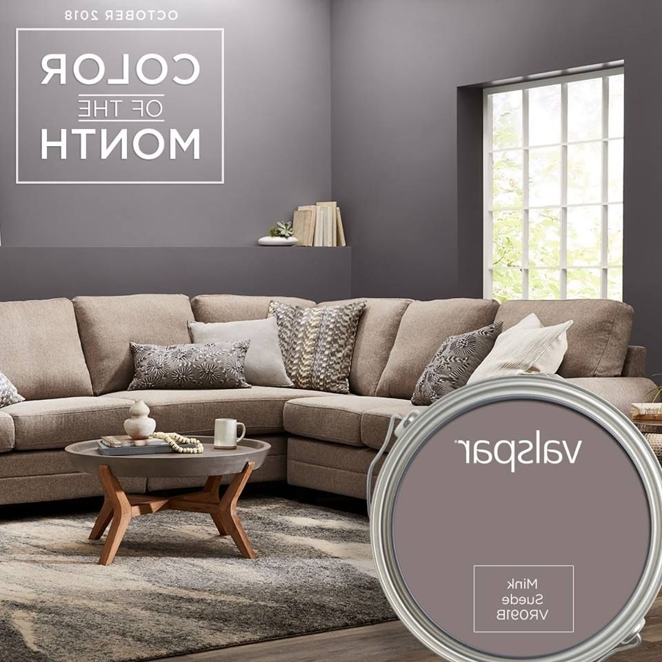 Mink Suede From Valspar, Our October Color Of The Month Mink And Grey Living Room