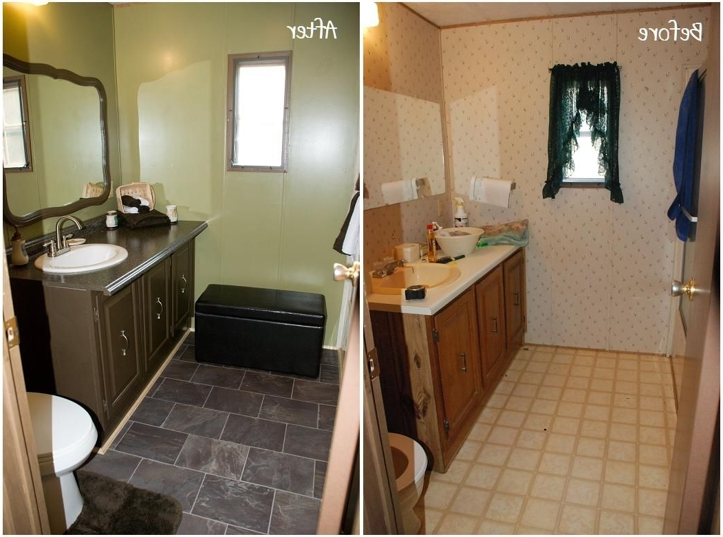 Pinamber Sparks On Future Home Ideas | Remodeling Mobile Mobile Home Bathroom Renovation