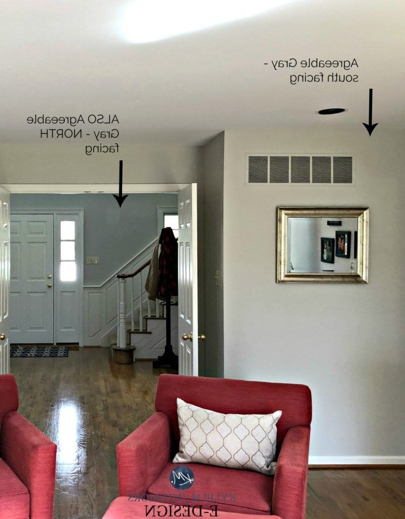 Sherwin Williams Agreeable Gray, Greige Paint Colour In 10+ North Facing Living Room Colour Inspirations